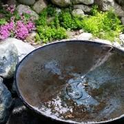 Ying Yang Bowl